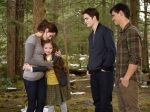 11Twilight-Saga-Breaking-Dawn-Part-2-900x675